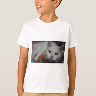 Sugar T-shirts