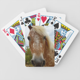 Sugar The Appaloosa Horse, Bicycle Playing Cards