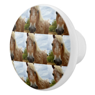 Sugar The Appaloosa Horse, Ceramic Draw Knob. Ceramic Knob