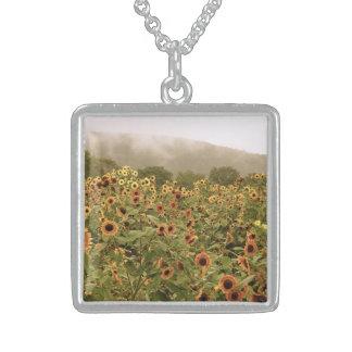 Sugarloaf Sunflowers Sterling Pendant