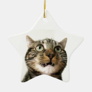 Suilan Ornaments