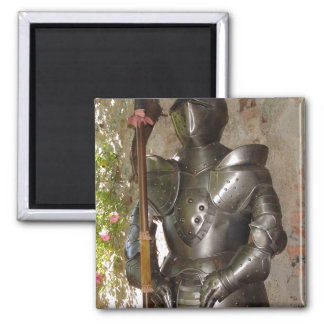 Suit of Armor Magnets