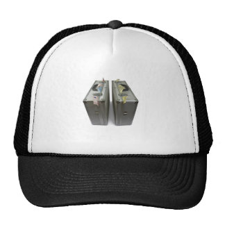 suitcases with money hat