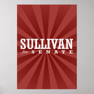 SULLIVAN FOR SENATE 2014 POSTER