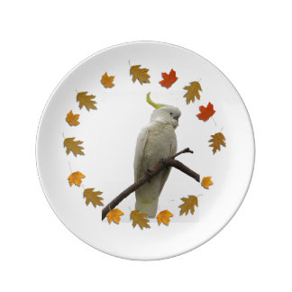 Sulpher Crested Cockatoo Plate