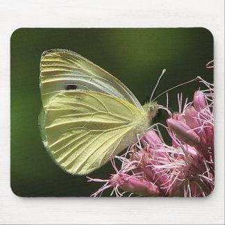 Sulphur Butterfly Mousepad