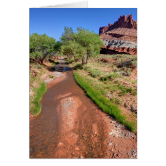Sulphur Creek Flows Through Capitol Reef Card