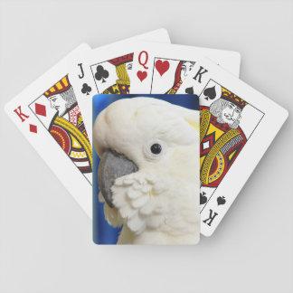 Sulphur Crested Cockatoo Poker Deck
