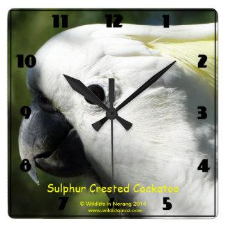 Sulphur Crested Cockatoo Clock