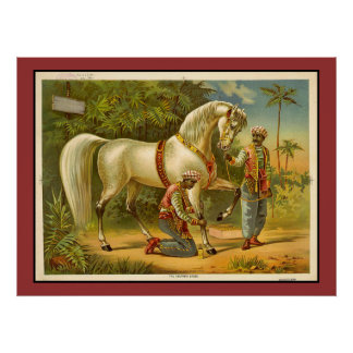 Sultans Steed ~ RARE VINTAGE POSTER PRINT