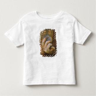 Sumatran Orangutan, or pongo pygmaeus abelii. Tee Shirts