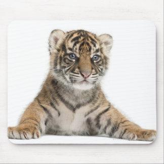 Sumatran Tiger cub Mouse Pad