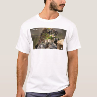 Summer - American Pica T-Shirt