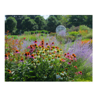 Summer at The strolling Gardens 2013 Postcard