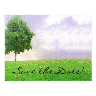 """Summer/Autumn Tree """"Save the Date"""" Postcard"""