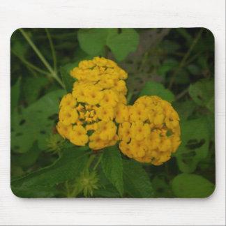 Summer Blooms mousepad