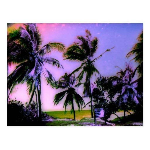 Summer Breeze post card