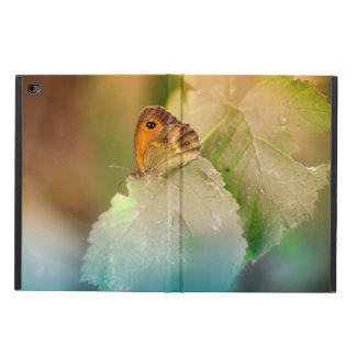 Summer butterfly on a leaf powis iPad air 2 case