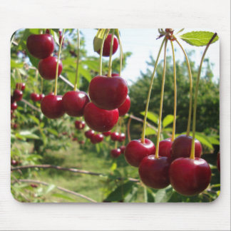 Summer Cherries Mouse Pad
