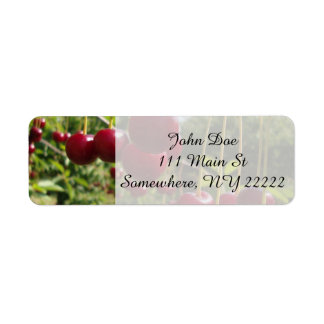 Summer Cherries Return Address Label