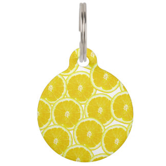 Summer Citrus Lemon Slices Pet Name Tag