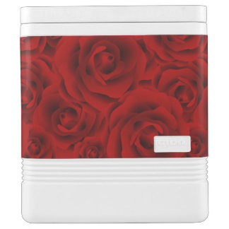 Summer colorful pattern rose cooler