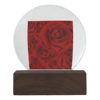 Summer colorful pattern rose snow globe