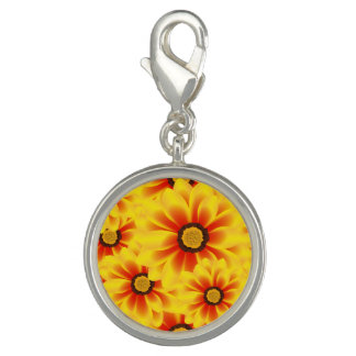 Summer colorful pattern yellow tickseed