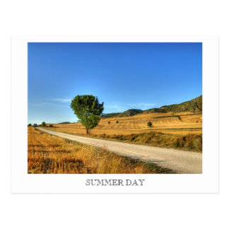 Summer Day Postcard