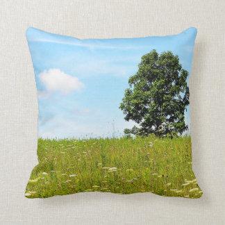 Summer Field American MoJo Pillows Cushions