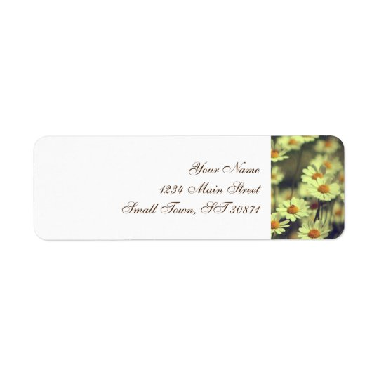 Summer field with white daisy return address label