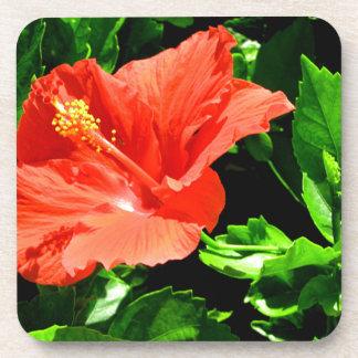 Summer Flower Drink Coaster