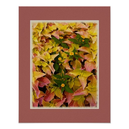 Summer Foliage Abstract Posters