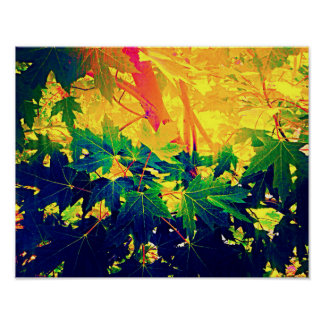 Summer Foliage Posters