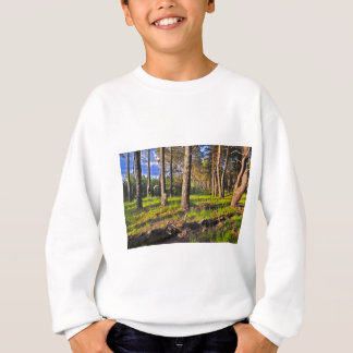 Summer forest in the evening light sweatshirt
