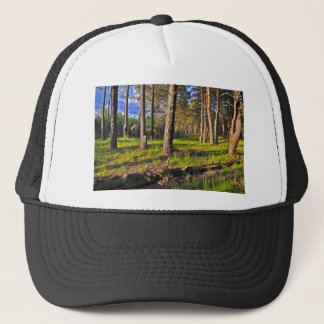 Summer forest in the evening light trucker hat