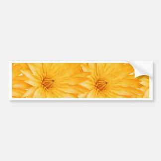 Summer fresh customizable template bumper sticker