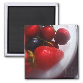 Summer Fruits Magnet