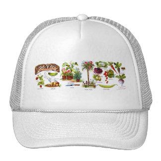 Summer Garden Botanicals Cap