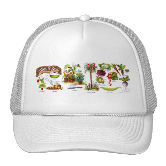 Summer Garden Botanicals Mesh Hats