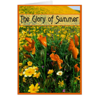 Summer Glory Cards