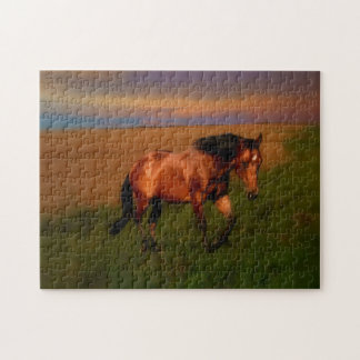 Summer Horse Puzzles