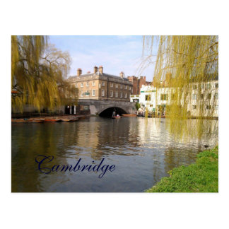 Summer in Cambridge Post Cards
