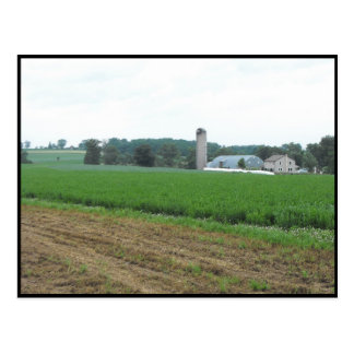 ~ Summer in Lancaster County ~ 10 Postcard