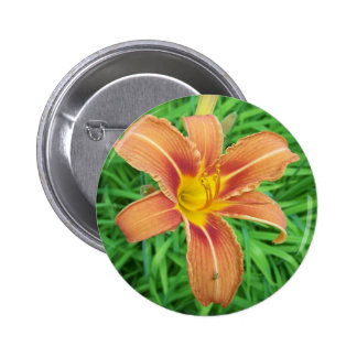 Summer In Maine 6 Cm Round Badge