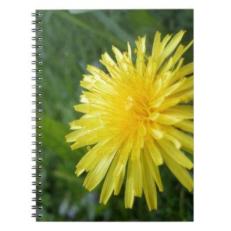 Summer Jewel Spiral Notebook