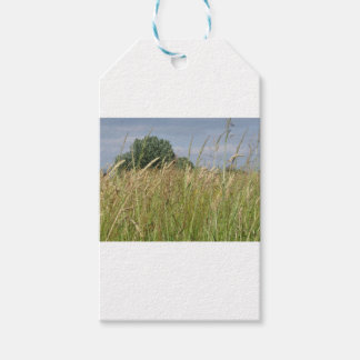 Summer landscape of wild field in the countryside gift tags