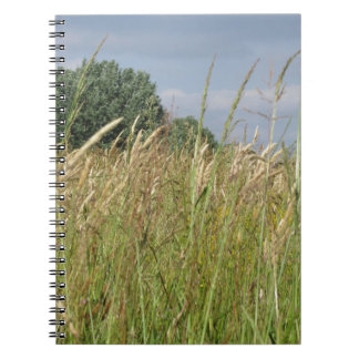 Summer landscape of wild field in the countryside notebook