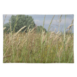 Summer landscape of wild field in the countryside placemat