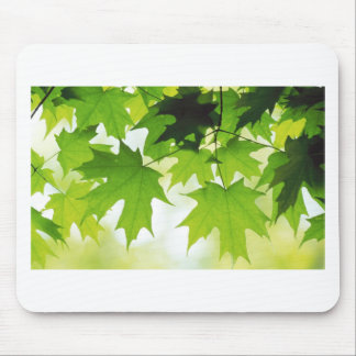 SUMMER LEAVES MOUSE PAD